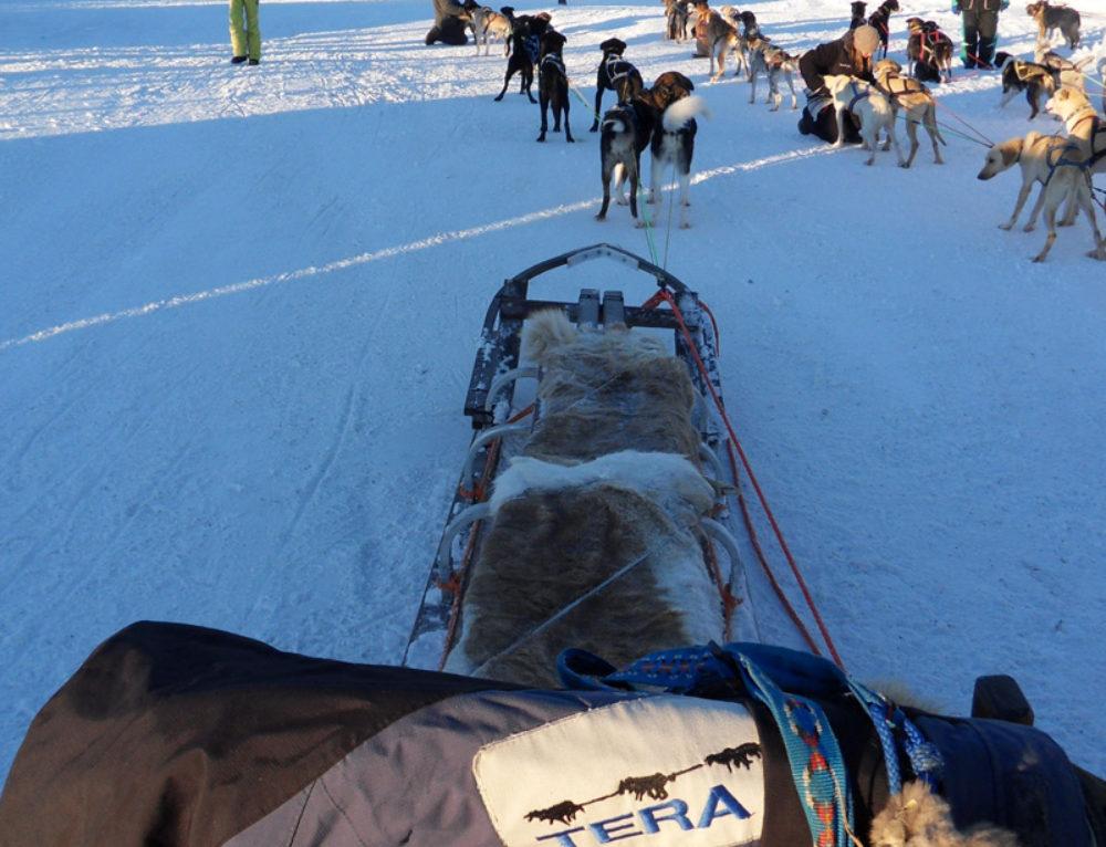 Saab Arctic Experience con medios de comunicación italianos
