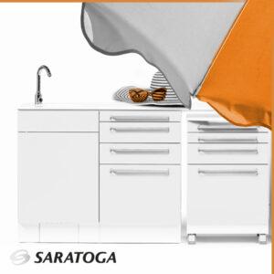 Saratoga e Anicecommunication