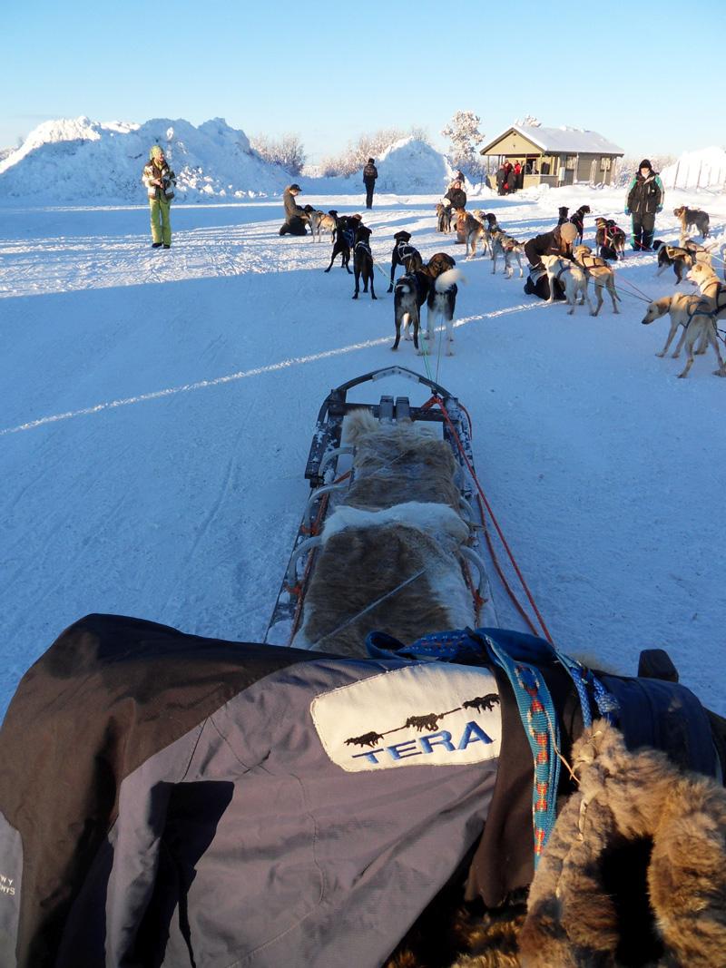 Saab Arctic Experience